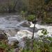 Falling Creek by timerskine
