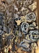 14th Nov 2020 - Blue jeans flowers.