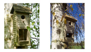 12th Nov 2020 - Bird House Revisited