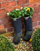 13th Nov 2020 - Recycled Wellies!