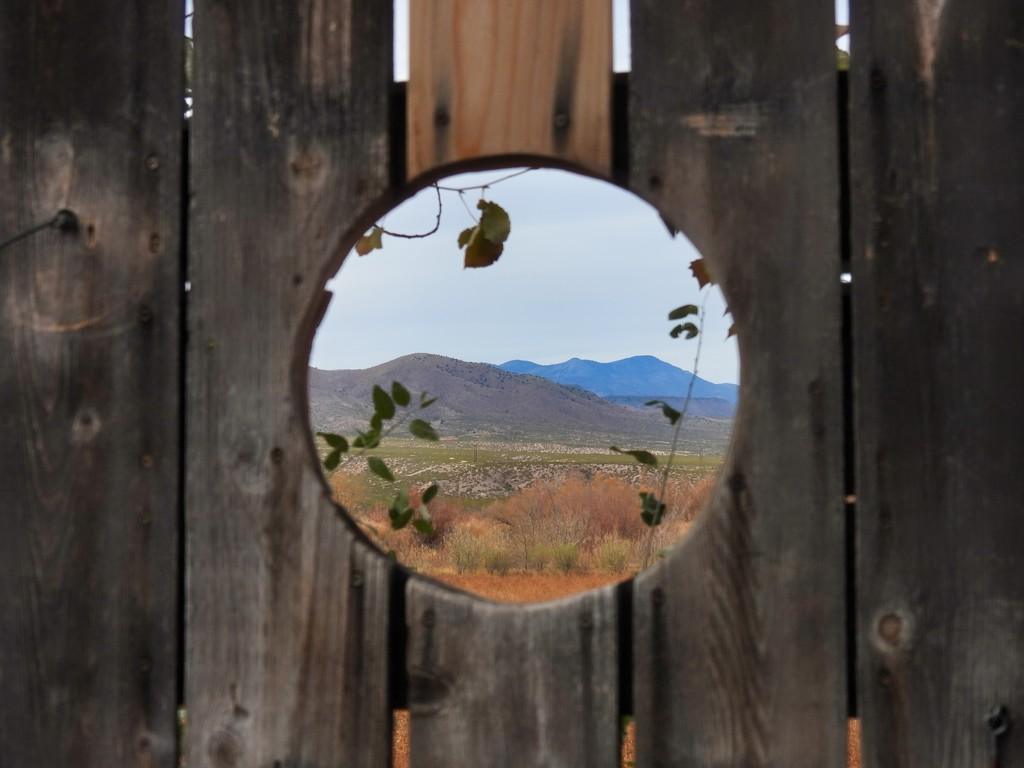 View through the Bird Blind by janeandcharlie
