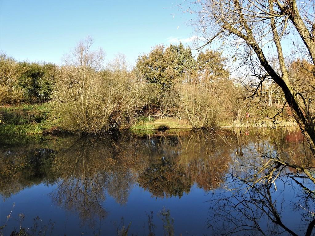 Pond - Beeston Sidings Nature Reserve by oldjosh