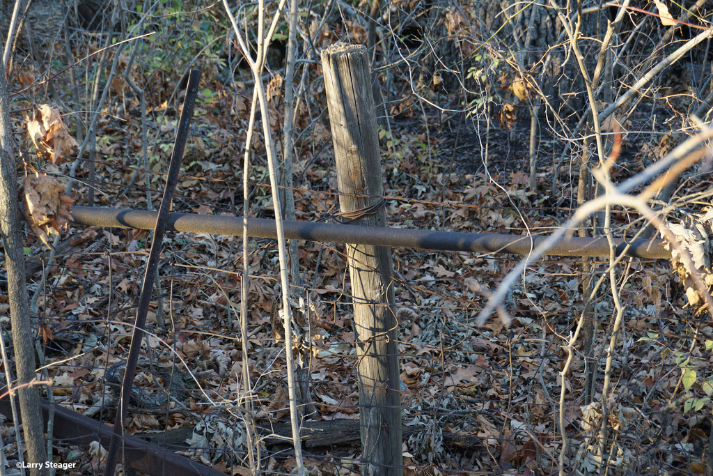 Very old fence reinforced by a old fence by larrysphotos