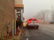 11th Nov 2020 - Fog will not deter me!