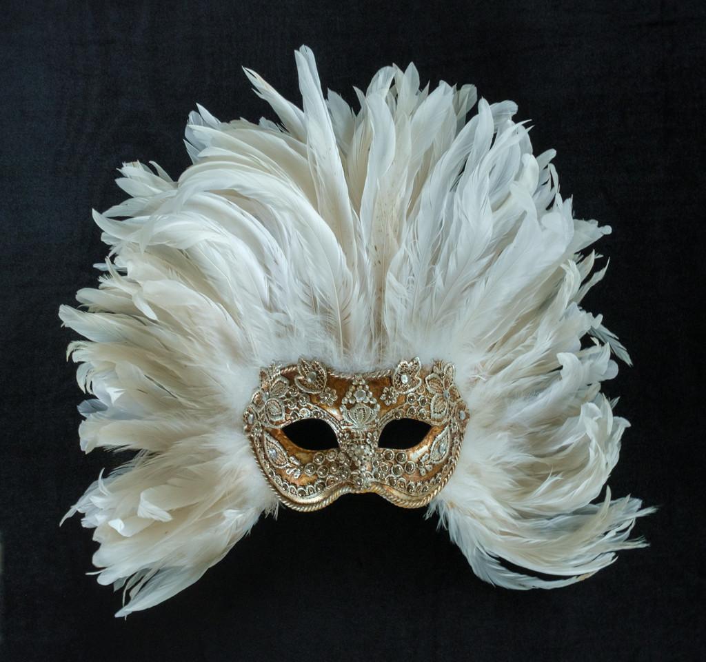 Venetian Carnival Mask by sprphotos