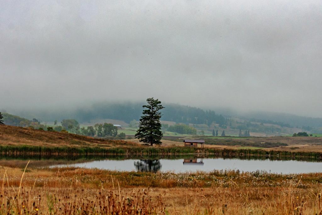 Leaving Williams Lake by farmreporter