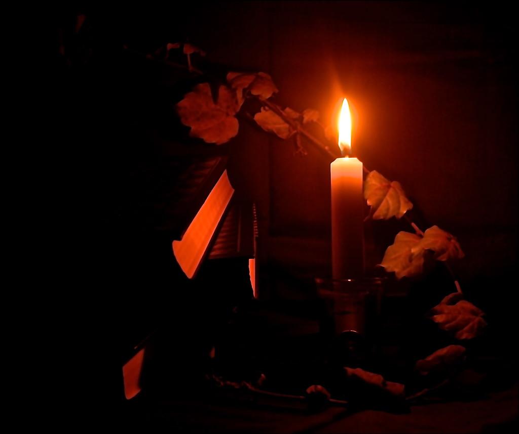 Still Life in Low Light by redandwhite