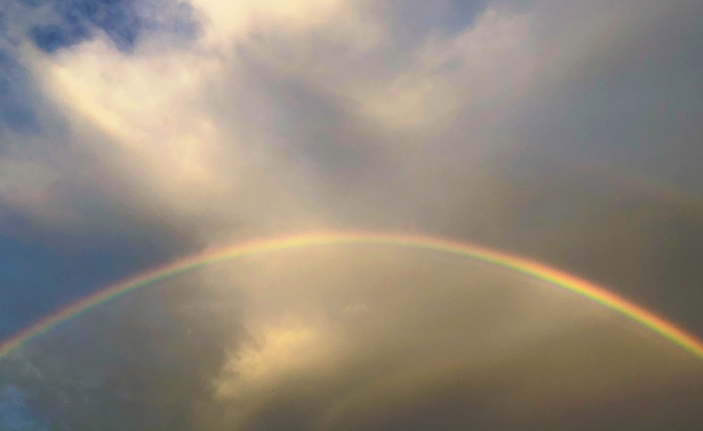 I went out to the back parking lot to wash my car and saw this spectacular rainbow. by congaree