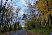 14th Nov 2020 - A lonesome road