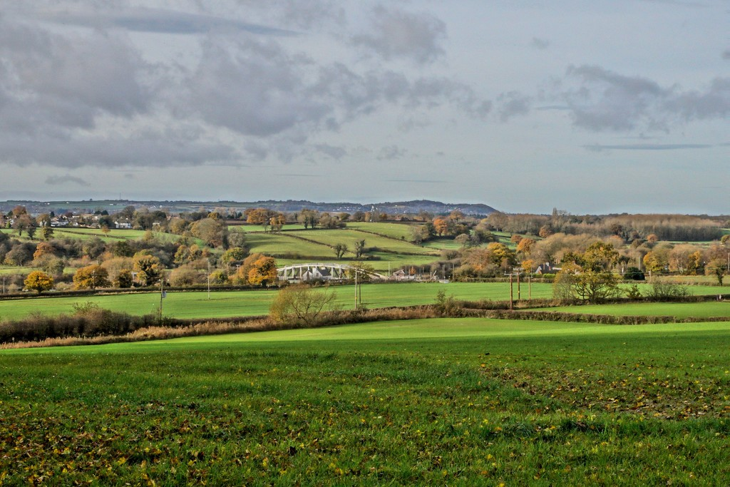 FROM ABOVE ACTON BRIDGE by markp