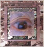 15th Nov 2020 - I Eye Aye