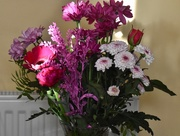 15th Nov 2020 - Flowers I bought today