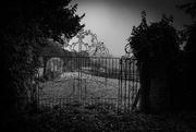 15th Nov 2020 - Abbey Orchard Gateway