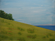 15th Nov 2020 - the grassy knoll at the beaches