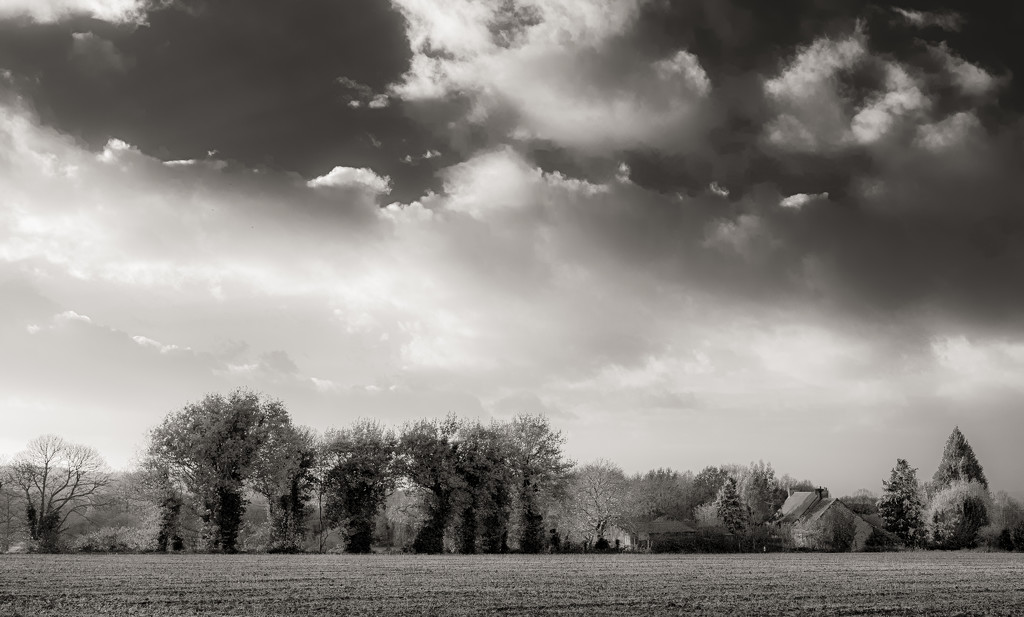 Another Big Sky... by vignouse