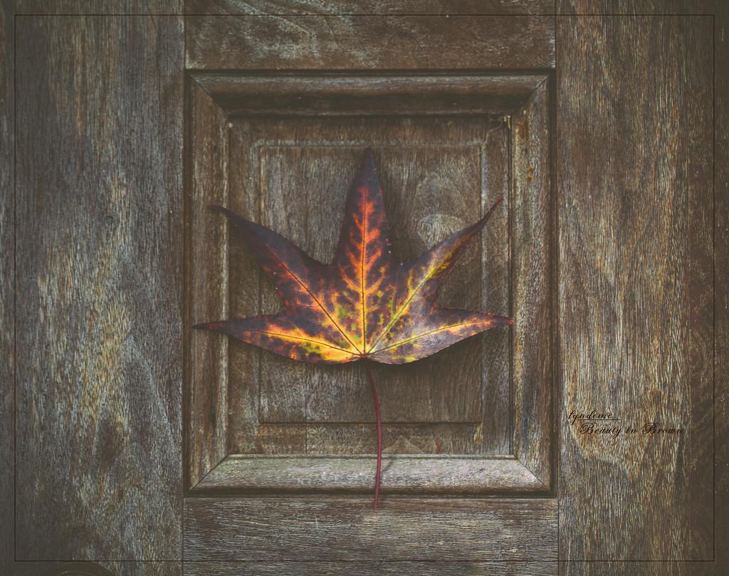 At Death's Door by lyndemc