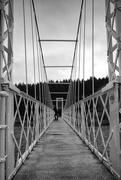 16th Nov 2020 - Polhollick Bridge