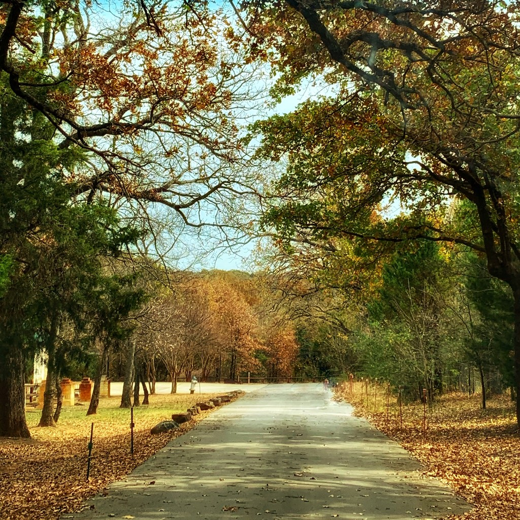 The back roads to the lake by louannwarren