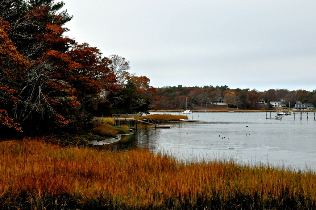 Fall on the Cape by sailingmusic