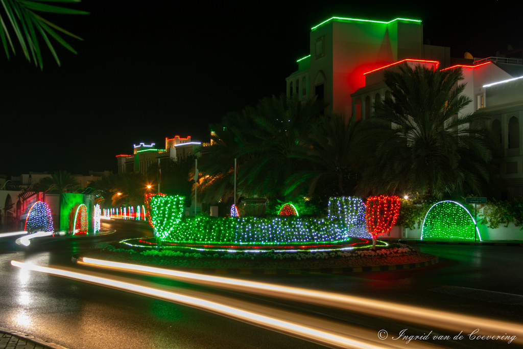 Festive lights in my neighborhood by ingrid01