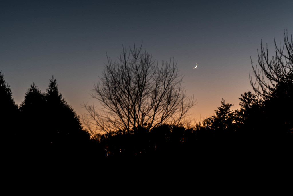 The moon at twilight by randystreat