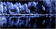17th Nov 2020 - Pond midnight IR