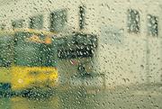 18th Nov 2020 - Rainy Street Corner