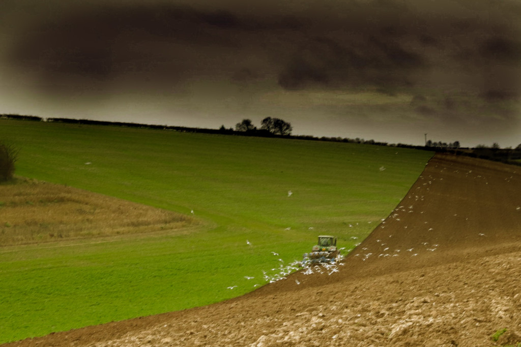 Lincolnshire Wolds by phil_sandford