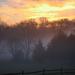Pennsylvania Backyard at Sunrise December 2012