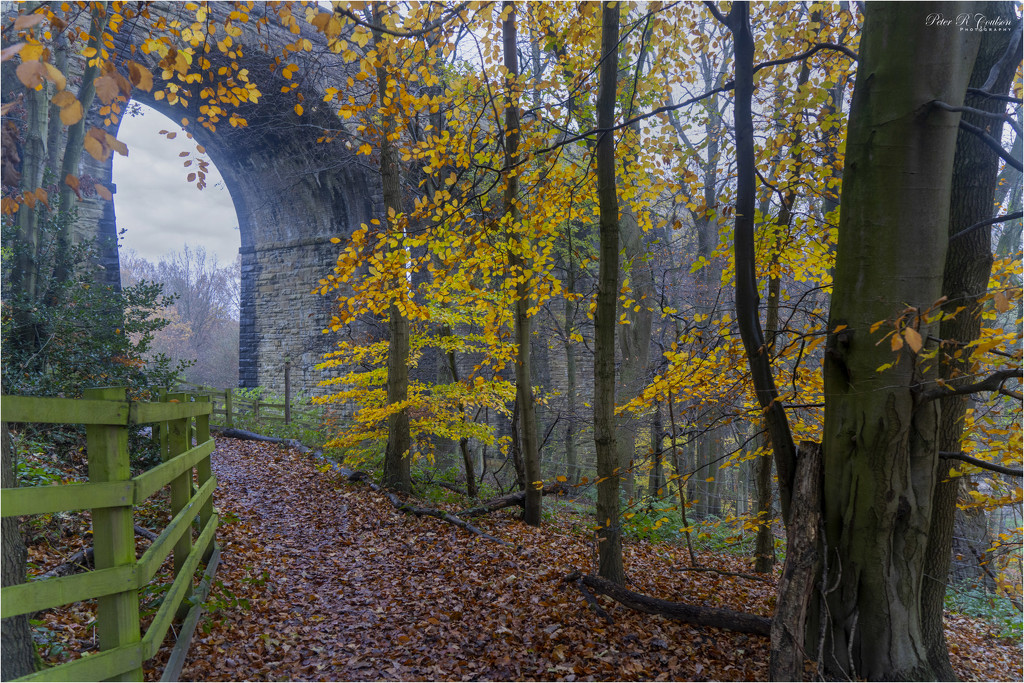 Pathway under the Viaduct by pcoulson