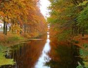 19th Nov 2020 - orange canal