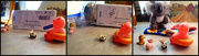 18th Nov 2020 - Trinkets, Treasures and Toys 3
