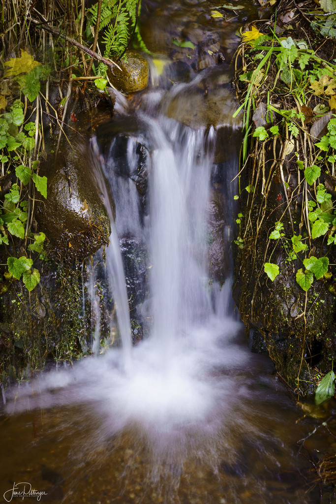 Waterfall at Home  by jgpittenger