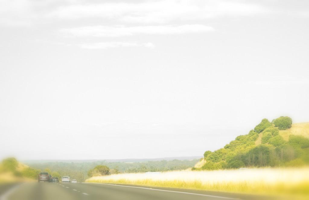 Roads Taken-24 by annied