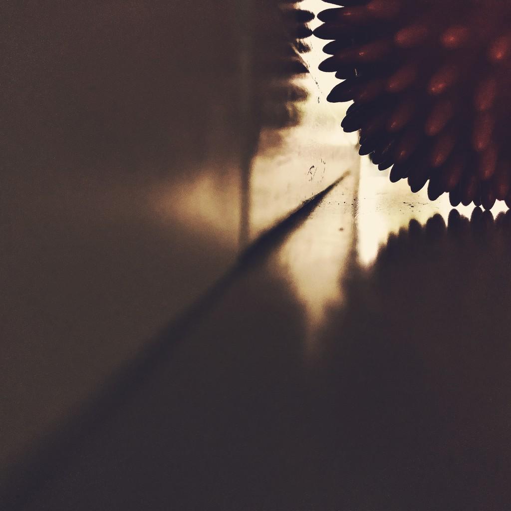 Hedgehog ball by mastermek