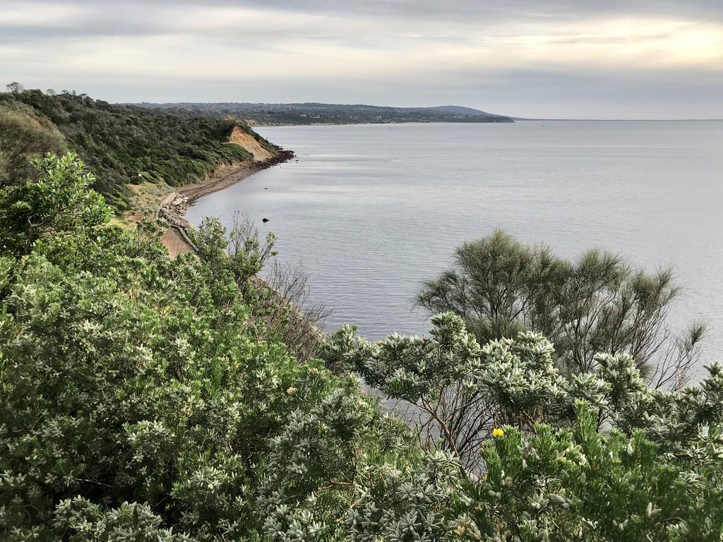 Mornington Peninsula  by pictureme