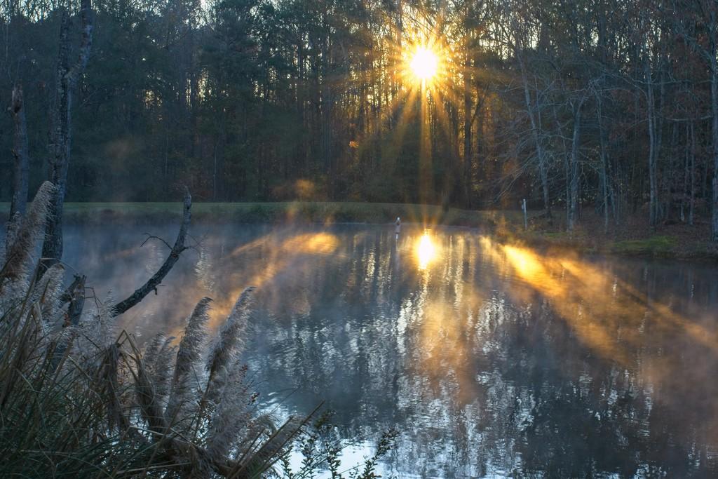 LHG-4980- November day breaks by rontu