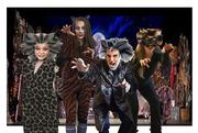 19th Nov 2020 - Cats !