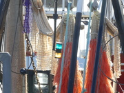19th Nov 2020 - fishing nets