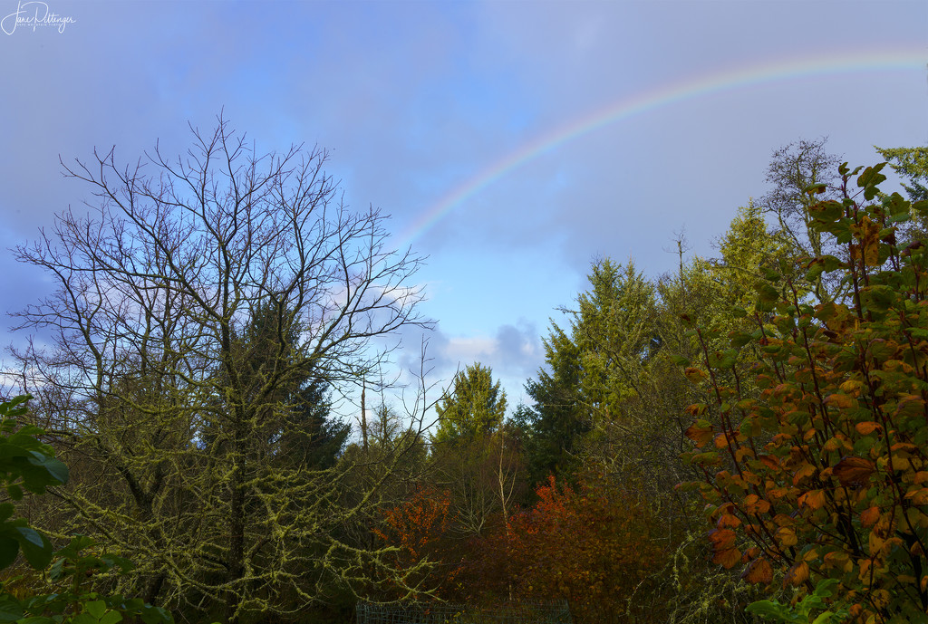 Rainbow in the Fall  by jgpittenger