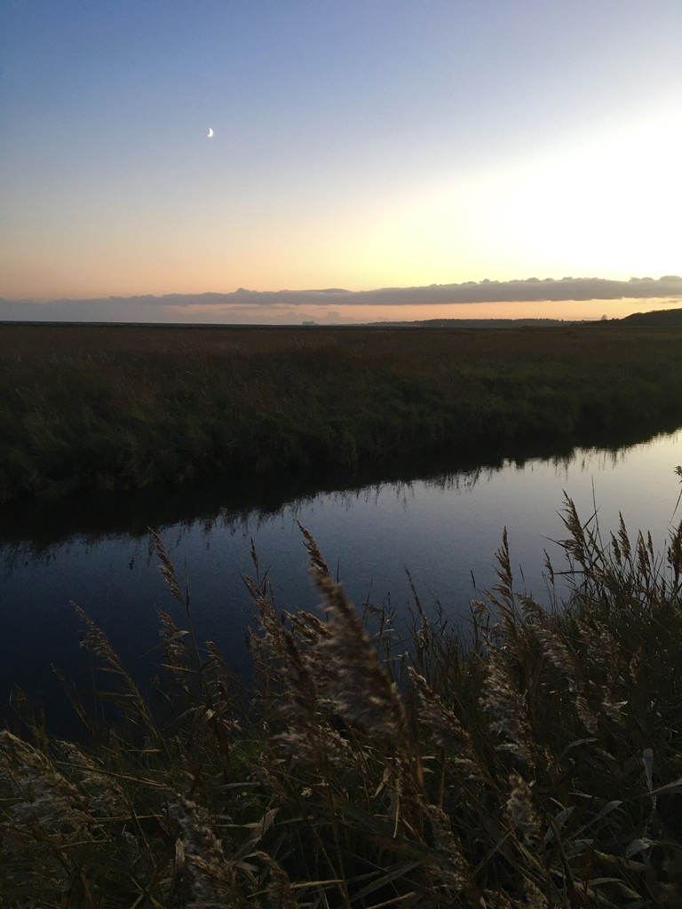 Dusk on the Marsh by helly31