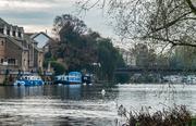 15th Nov 2020 - Walking by the river