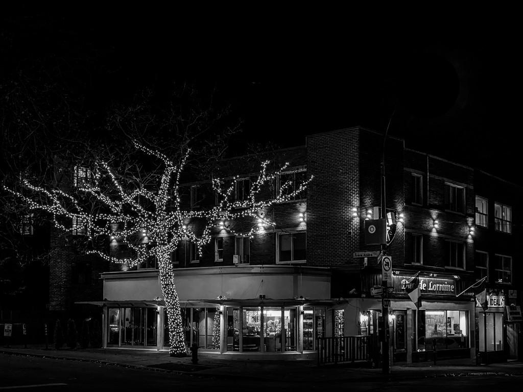 Festive Lights by sprphotos