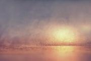 20th Nov 2020 - 2020-11-20 foggy winter sunset?