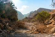 20th Nov 2020 - A Wadi
