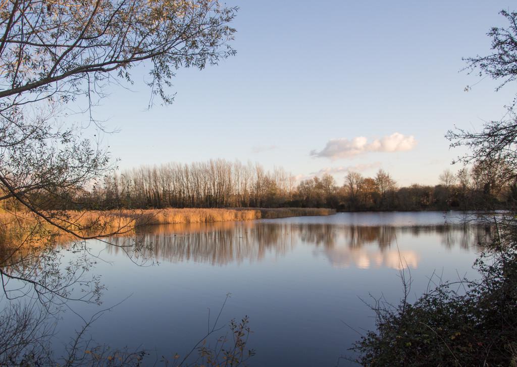 Hayling Lake by busylady