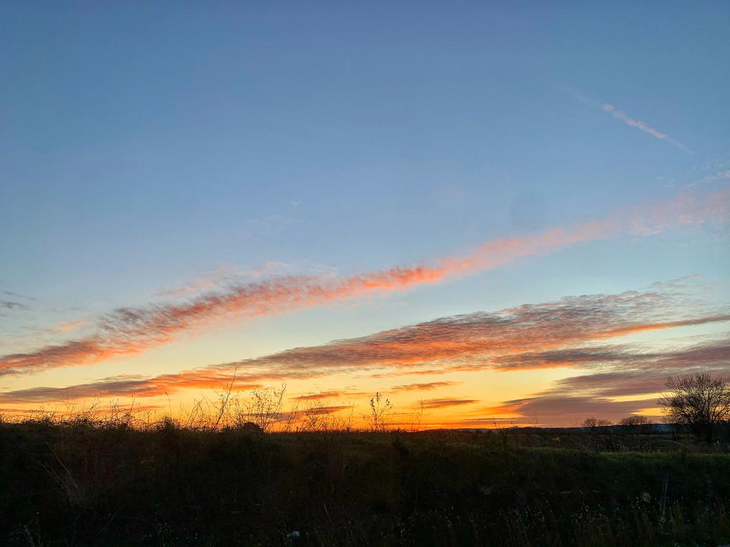 Nice sky.  by cocobella