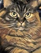 20th Nov 2020 - The Painter's Cat