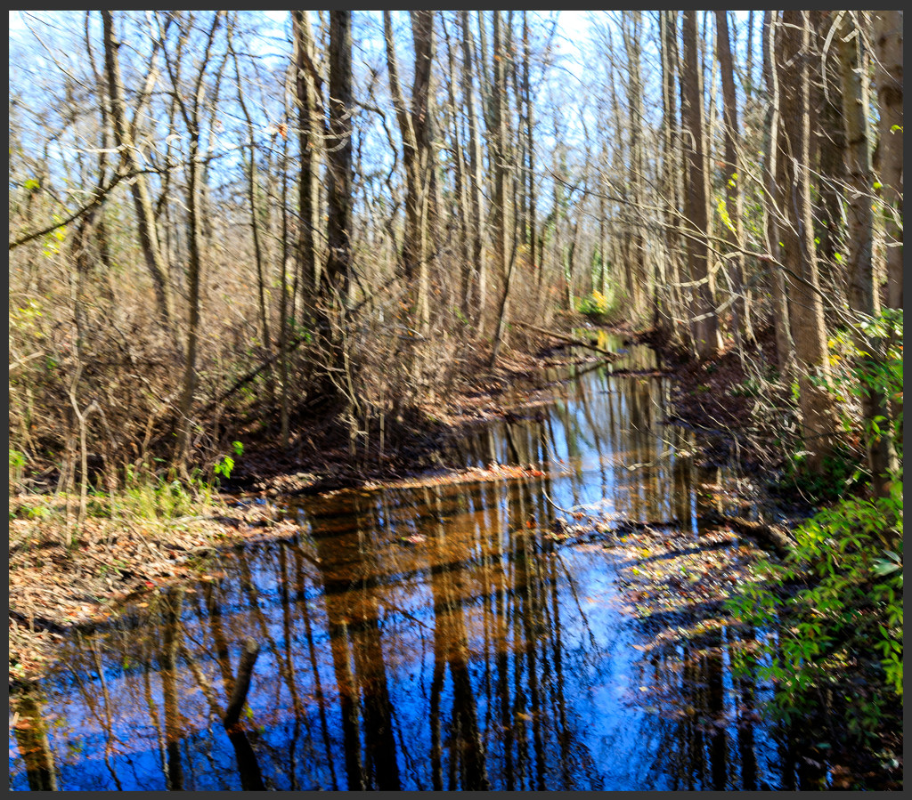 Reflections in Our Stream by hjbenson