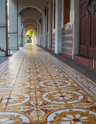 21st Nov 2020 - Five Foot Walkway